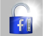Schloß mit Facebook Logo