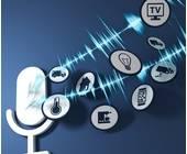 Sprachassistenten Voice search webadressen