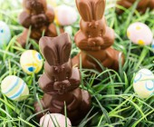 Schokoladen-Osterhasen Ostereier Gras