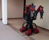 Roboter bei der Amazon Picking Challenge