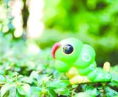 Pokemon-Raupy-im-Wald.tif