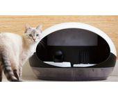 Smarter Büsi-Automat setzt Katze auf Diät