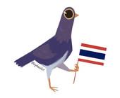 Trash Dove mit Thailand-Flagge