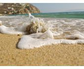 Fotografieren am Meer: Sand und Salz sind Gift für Kameras