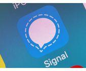 Signal-Messenger bekommt verschlüsselte Profil-Fotos