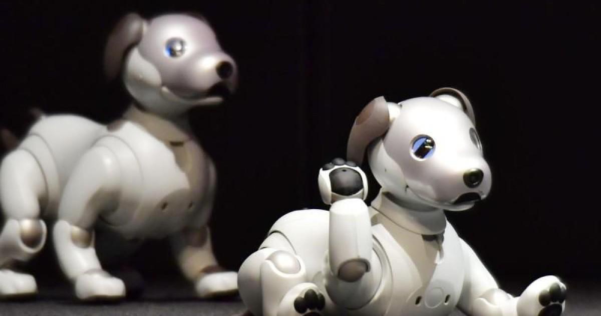 roboterhund aibo von sony ist zur ck. Black Bedroom Furniture Sets. Home Design Ideas