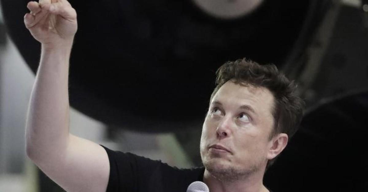 Elon Musk Aktien